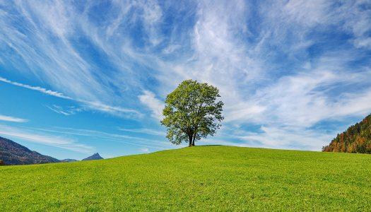Zielsetzung und Erarbeitung einer Lebensvision